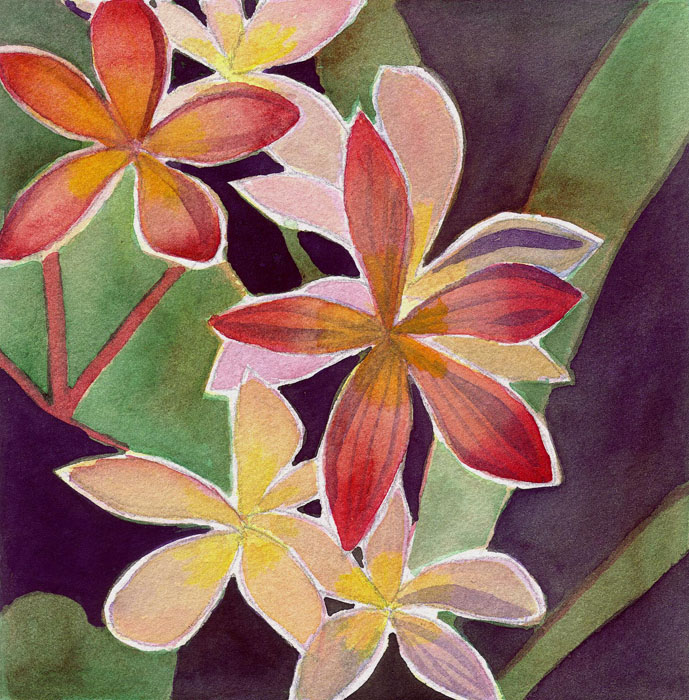 Hawaii Flower paintings by floral artist Marshall White.
